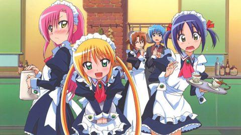 Hayate no Gotoku! (Season 1)(Complete)